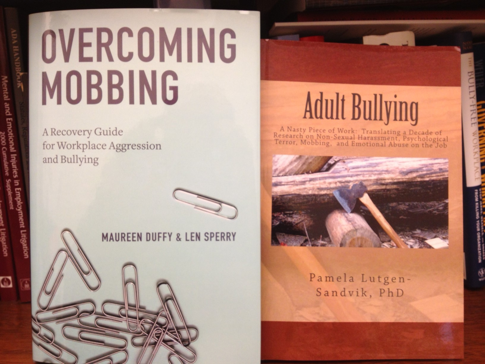 workplace bullying mobbing The bullying of academics follows a pattern of horrendous, orwellian elimination rituals, often hidden from the public despite the anti-bullying policies.