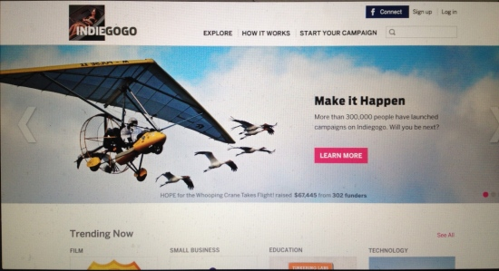 Screen shot of Indiegogo home page