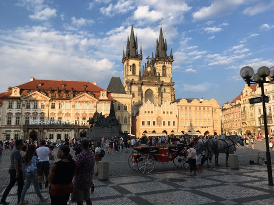 Prague: A week of learning about law and mental health